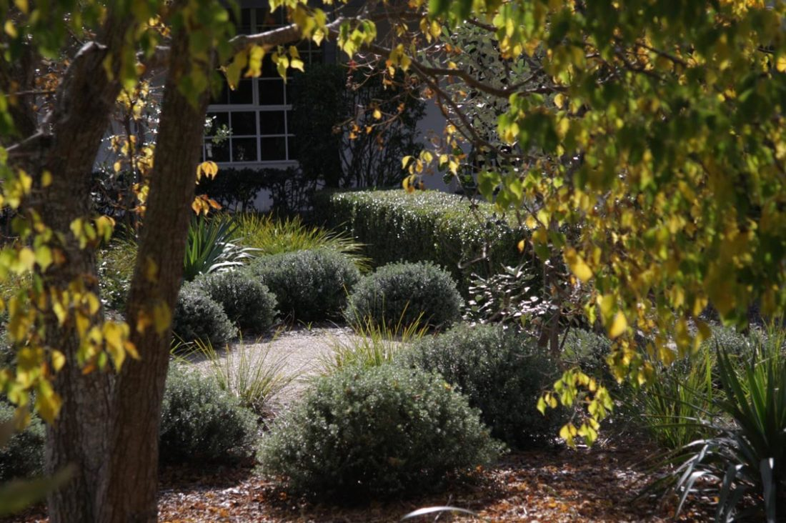 Michael Cooke Garden Design